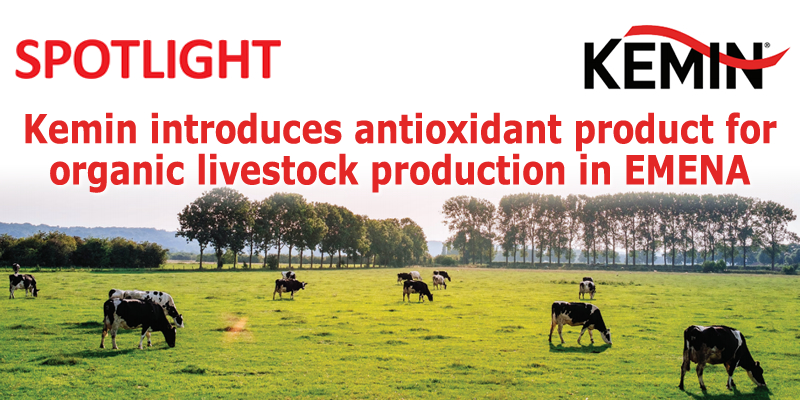 Kemin introduces antioxidant product for organic livestock production in EMENA